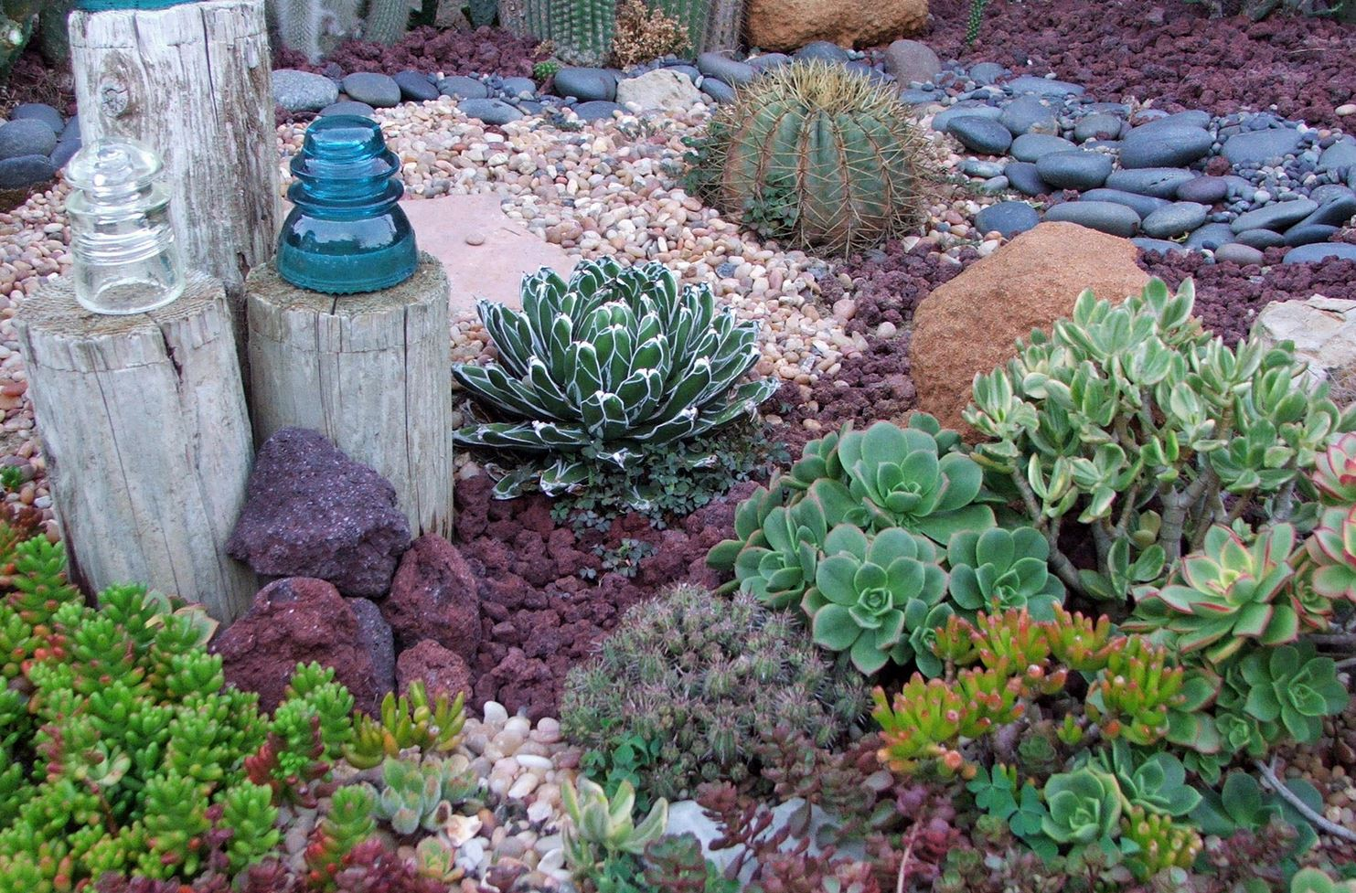 drought resistant landscaping landscaping ideas for a gorgeous, drought-resistant yard LWLZGMP