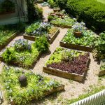 edible landscaping plant a square foot vegetable garden