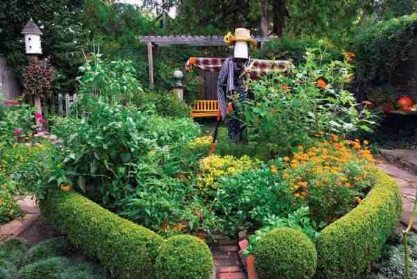 edible landscaping scarecrow and hedges VLZWFSZ