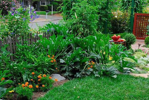 edible landscaping TUPYRSL
