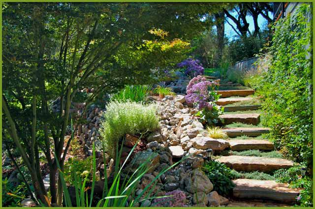 evergreen landscaping is a full big image GEUYXSL