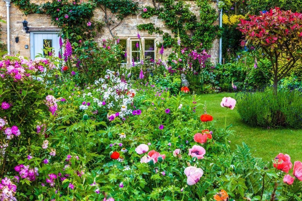 floral cottage garden MQYTCIV
