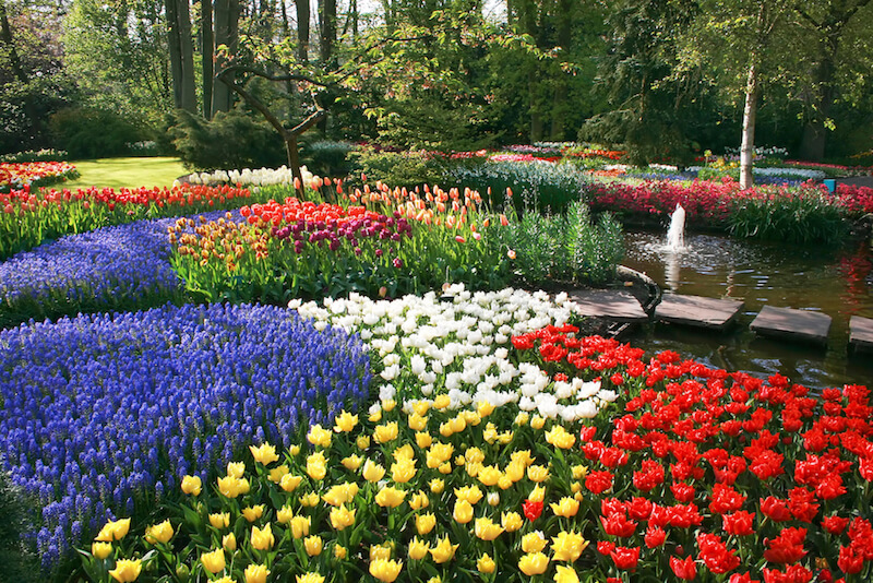 flower beds 25 magical flower bed ideas and designs XQAKLCA