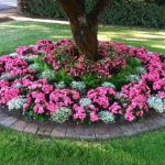 Have Flower Beds and add colour to your Home