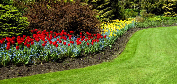 flower beds clearing weeds from flower bed OMEGVOI