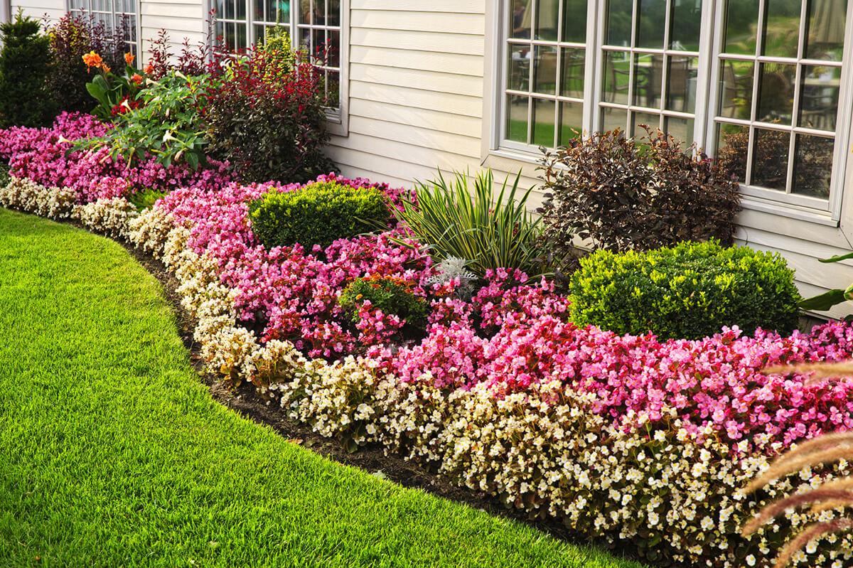 flower beds perennial flower bed ideas CZWQMBY