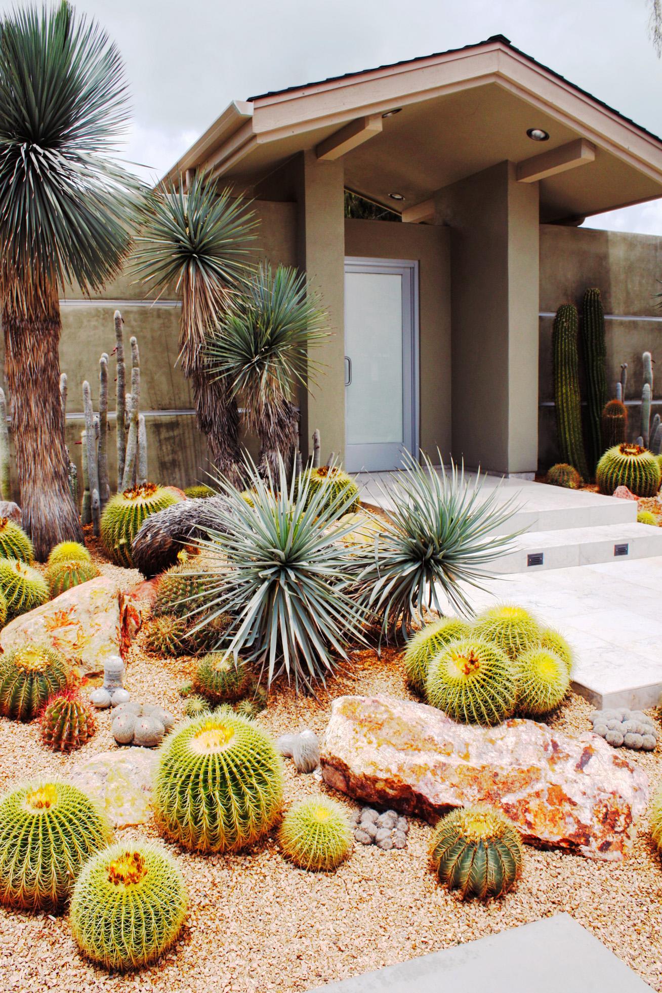 front yard designs amazing front yard ideas NNVTDCU