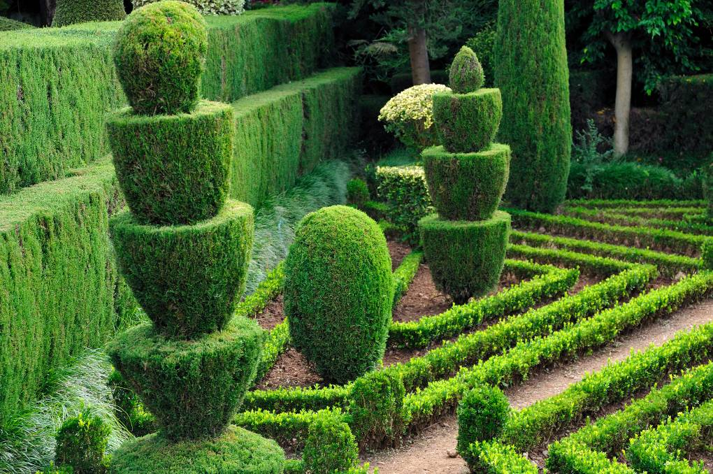 garden hedges living sculpture: hedges can be purely practical, providing privacy, or a PJTTCNP