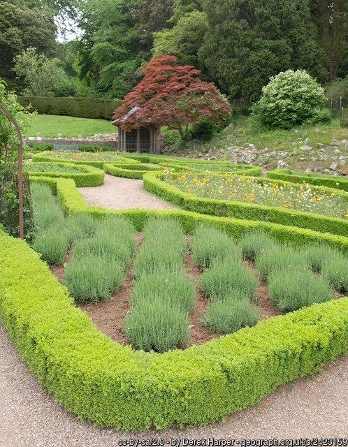 garden hedges QRKCZYS