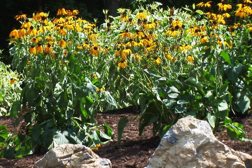 garden landscaping ideas | diy GPWRIDA