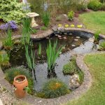 Process of adorning your living environment with garden ponds