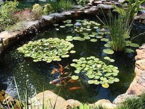garden ponds sunken pond kits AGSEWCW