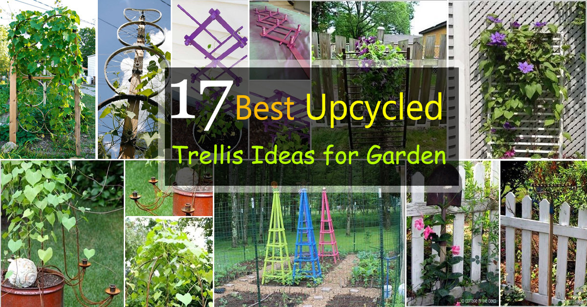 garden trellises 17 best upcycled trellis ideas for garden | cool trellis designs for KXDAUNI