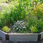 herb gardens herb garden IRCDTHB