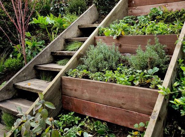 herb gardens YRUISLM