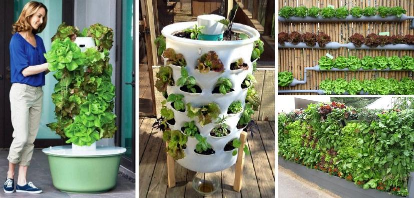home garden ideas 20+ vertical vegetable garden ideas IFGSDBH