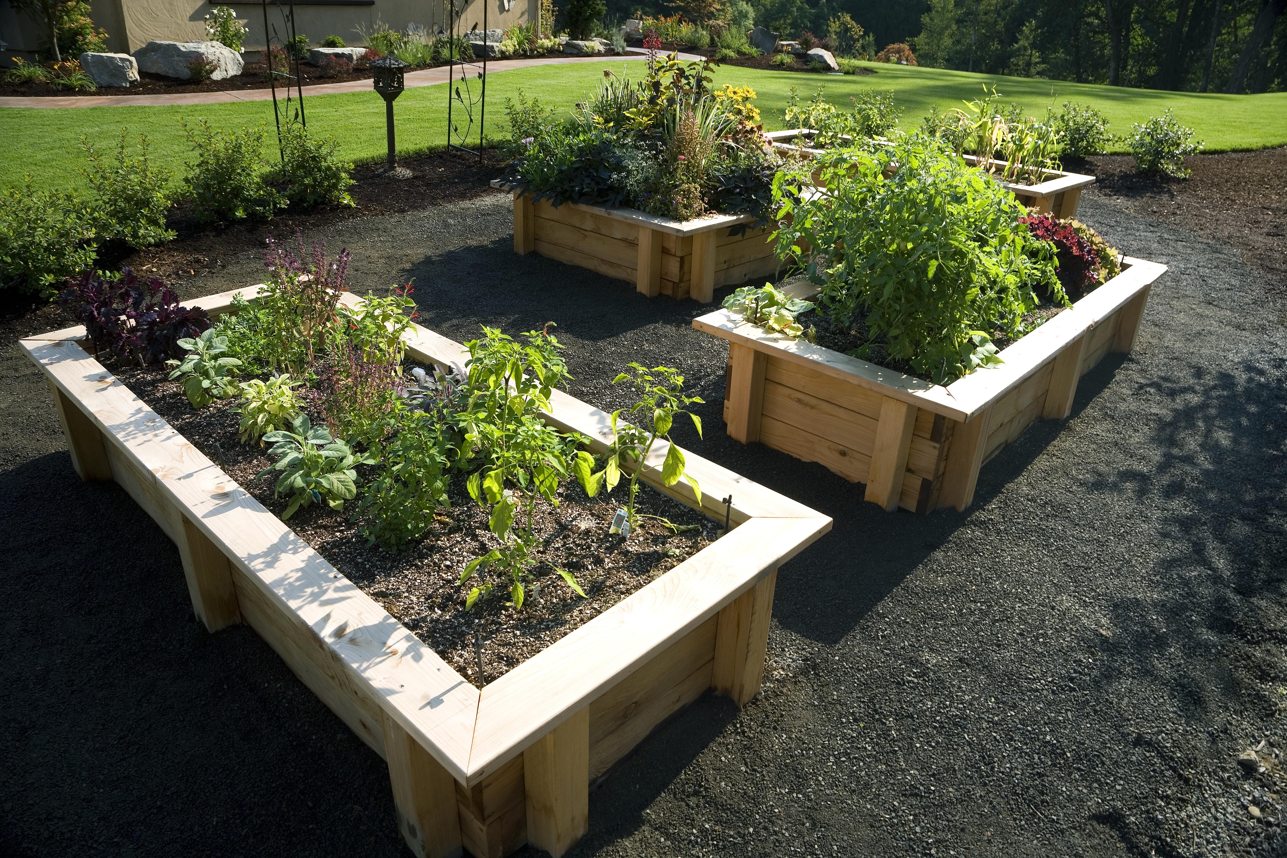 home garden ideas kids gardening tips | ideas u0026 projects at home KPBCZVE