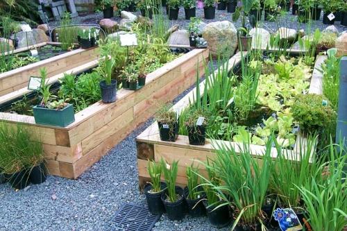 home garden ideas with outdoor pond OTEIRNK