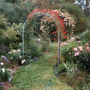 house garden arches TKODHOL