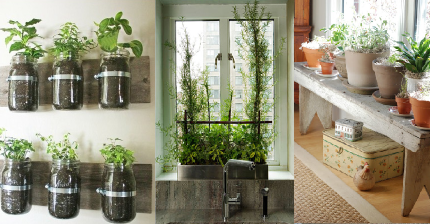 indoor garden ideas indoor gardening ideas RYUAQGC