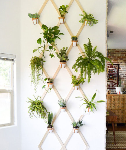 indoor garden ideas indoor trellis GTVRPXI