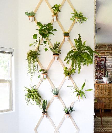 indoor garden ideas indoor trellis GTVRPXI