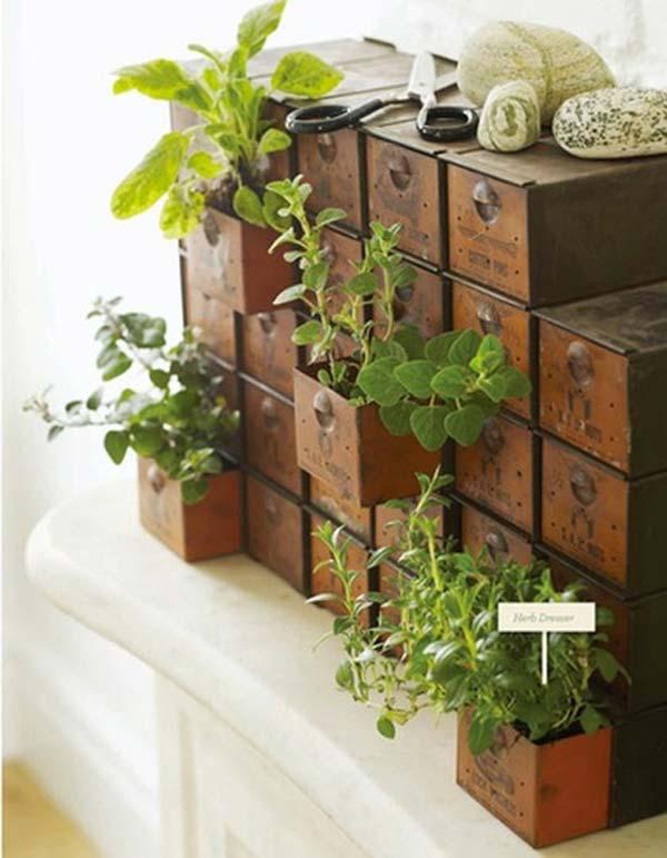 indoor garden ideas mini-indoor-gardening-14 TIQCCRZ