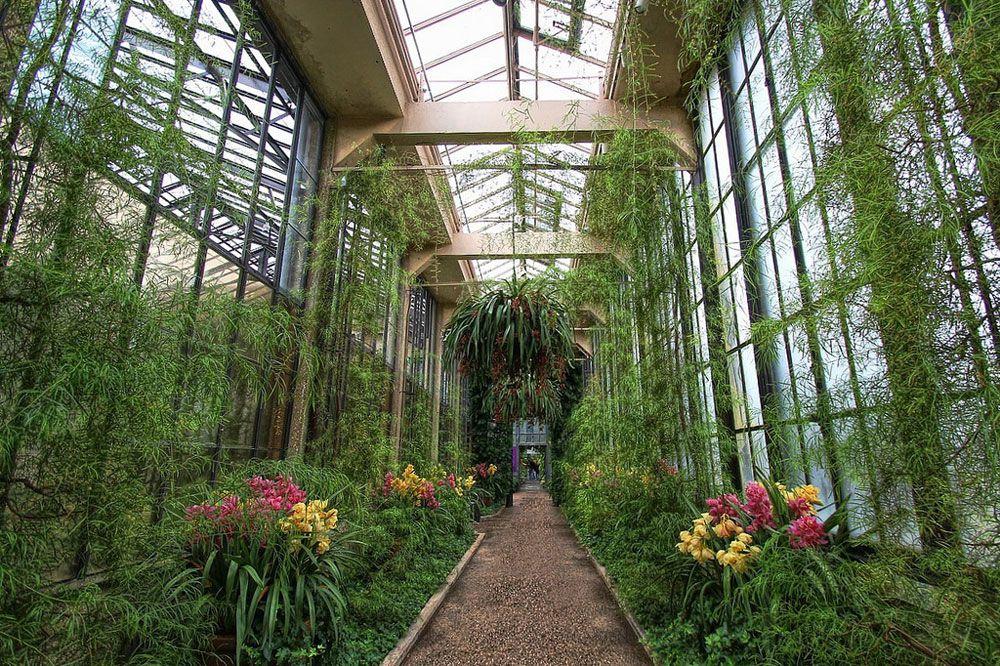 indoor gardens a footpath in longwood gardens IBDICMY