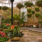 Tips for managing indoor gardens