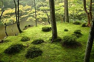 japanese garden PFKFXSZ