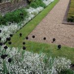 The Landscape Edging Ideas You can explore for Your Design