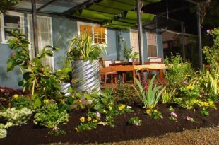 landscaping ideas for backyard dycr304h_byl-5-backyard-flower-beds_s4x3 OUSNTHG