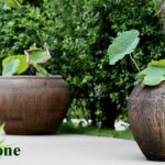 Different types of large garden pots