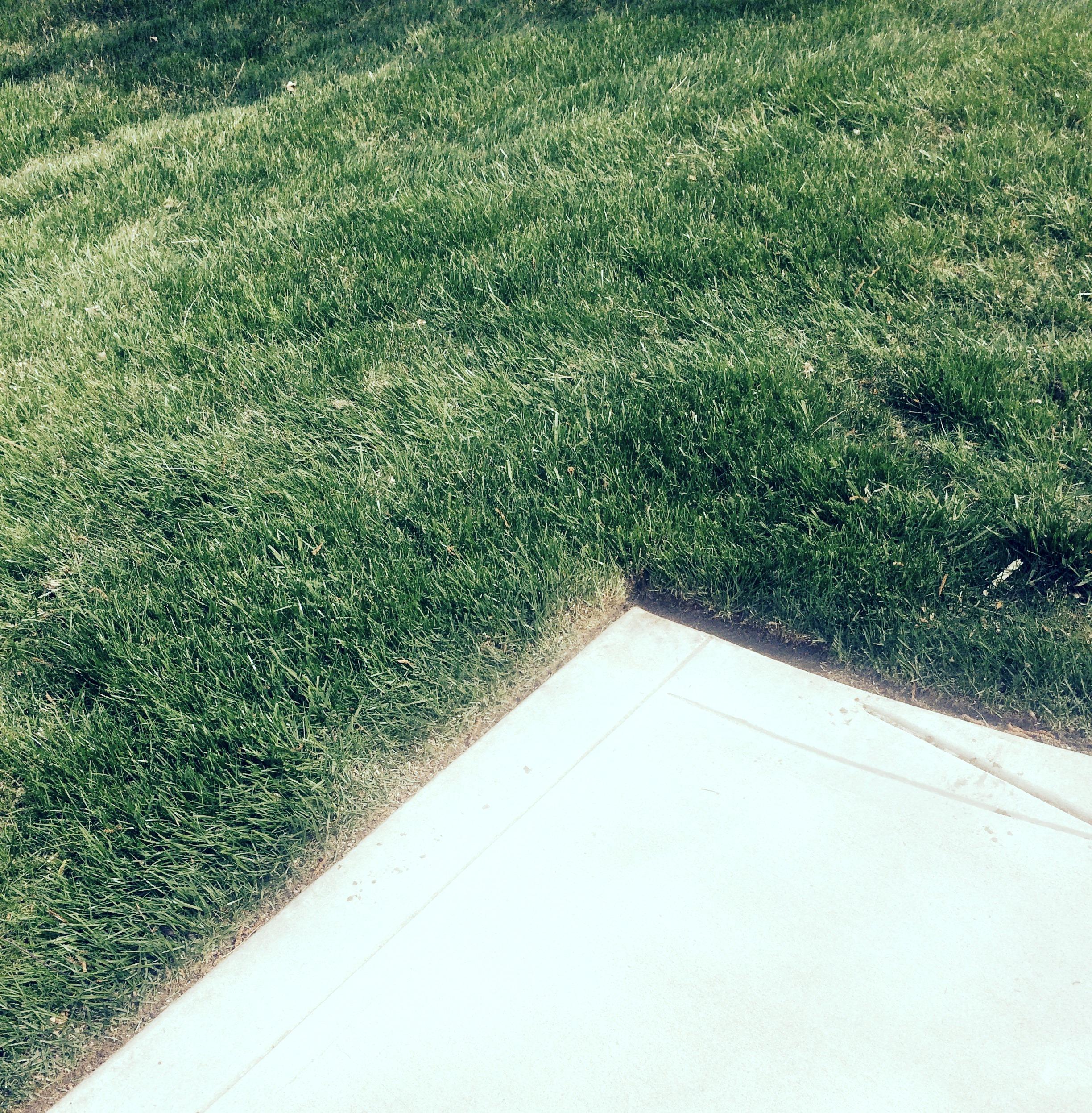 lawn edging carmel landscaper TWPXRFM