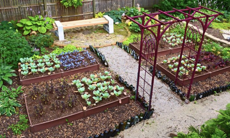 modern vegetable garden design ideas YYOSTJH