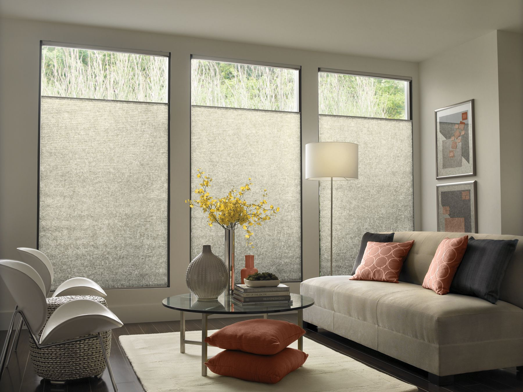 modern window treatments how many of you have ever been sitting in a coffee shop HNOKFVO