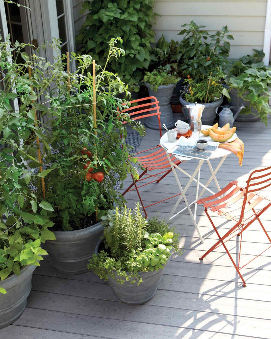 patio garden garden pot basics ZTHOIEC