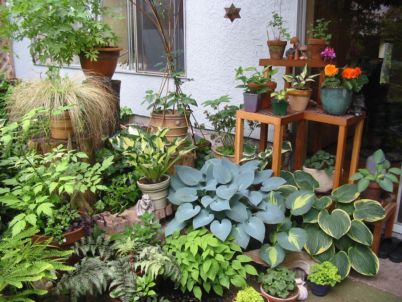 patio garden patio gardening patio vegetable garden ideas for small spaces IRUGWNO