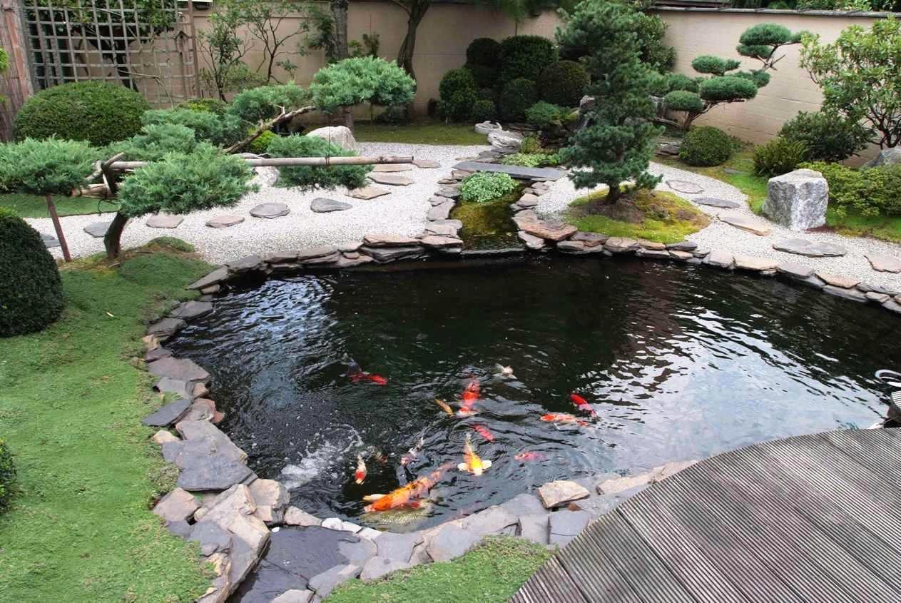 pond design small koi fish in garden for ponds design ideas - youtube FDAZIOP