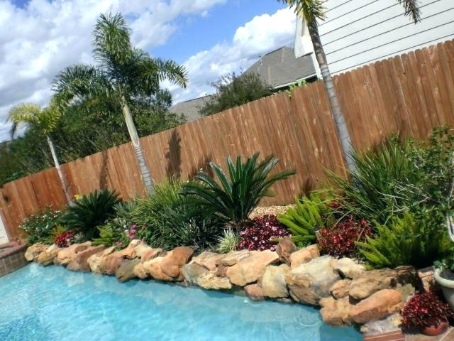 pool landscaping ideas accent plants for pool landscaping