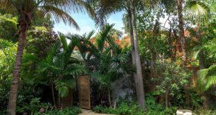 pool landscaping swimming pool design ideas | hgtv CAJHAGU