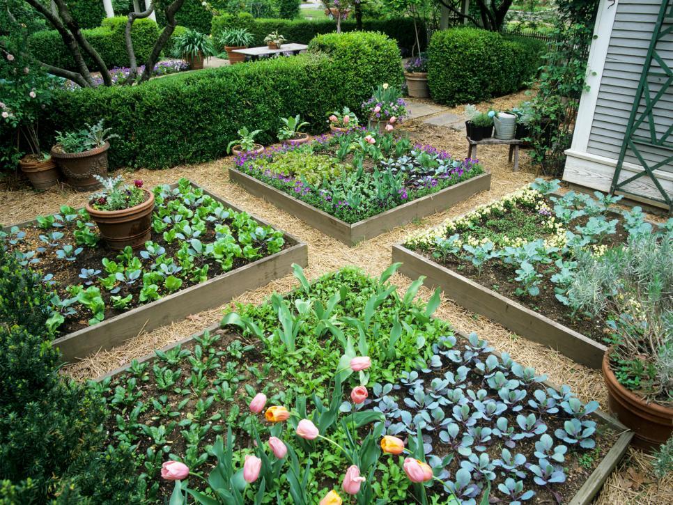raised bed gardening 15 raised garden bed ideas | hgtv QFOCFTH