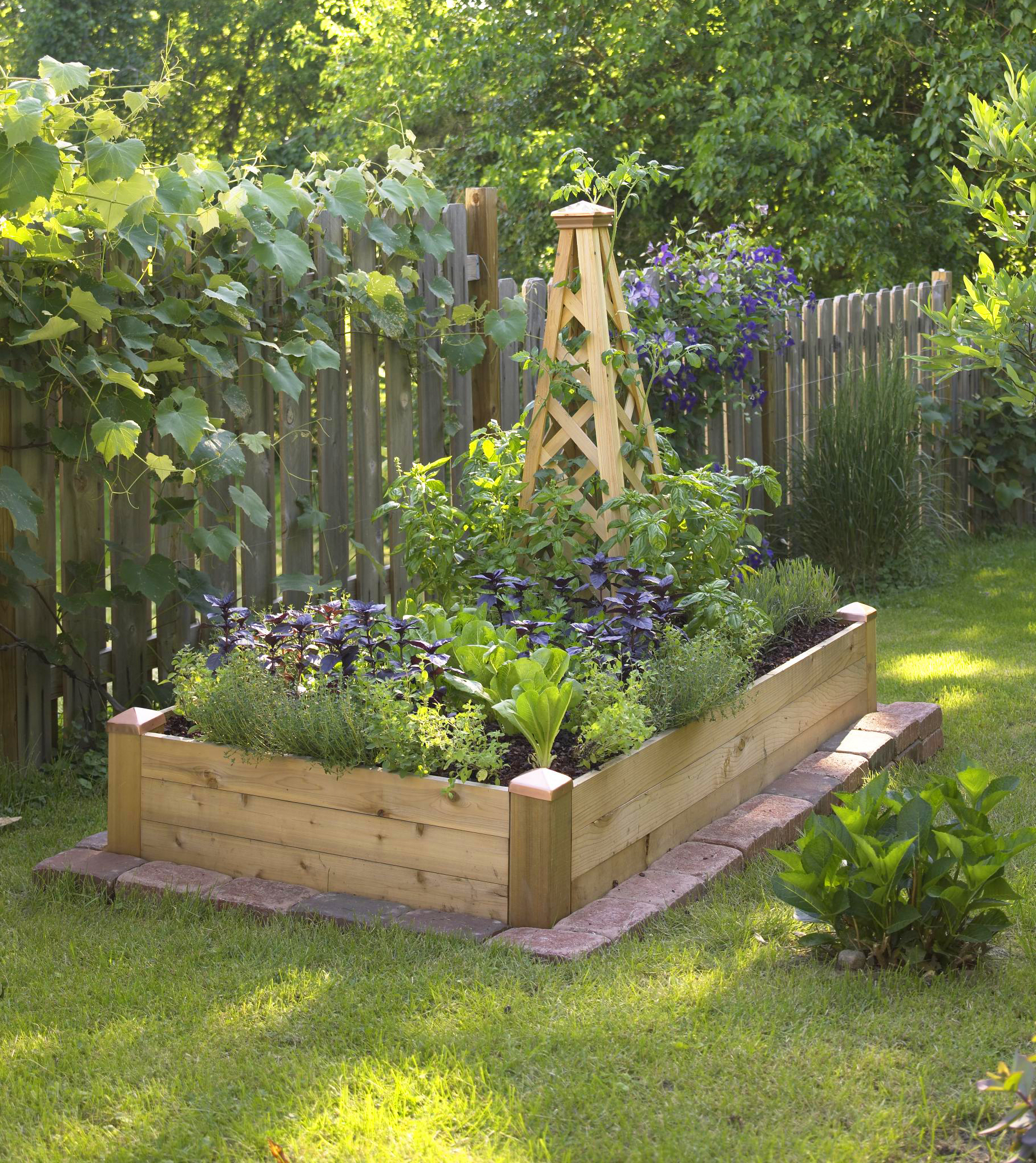 raised bed gardening a wood obelisk provides space for climbing plants in a 3x6-foot raised ABXMSZR