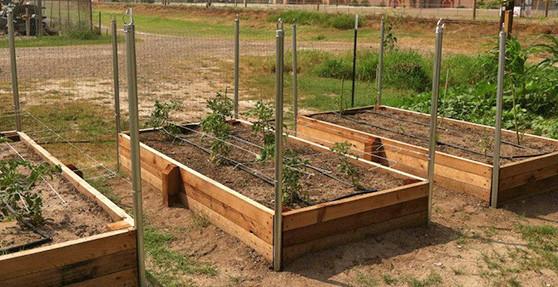 raised bed gardening raised garden beds YOGHPXG