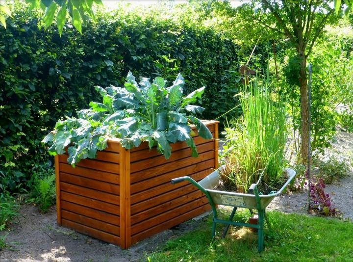 raised bed gardens raised bed garden-3 HSNJRSI
