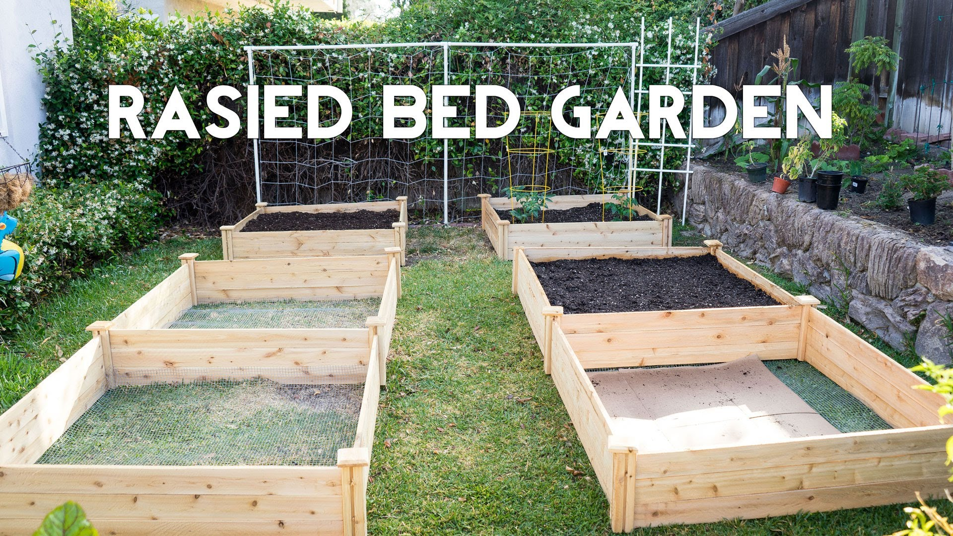raised bed gardens raised bed gardening - how to start a garden with raised beds CQVNLIU