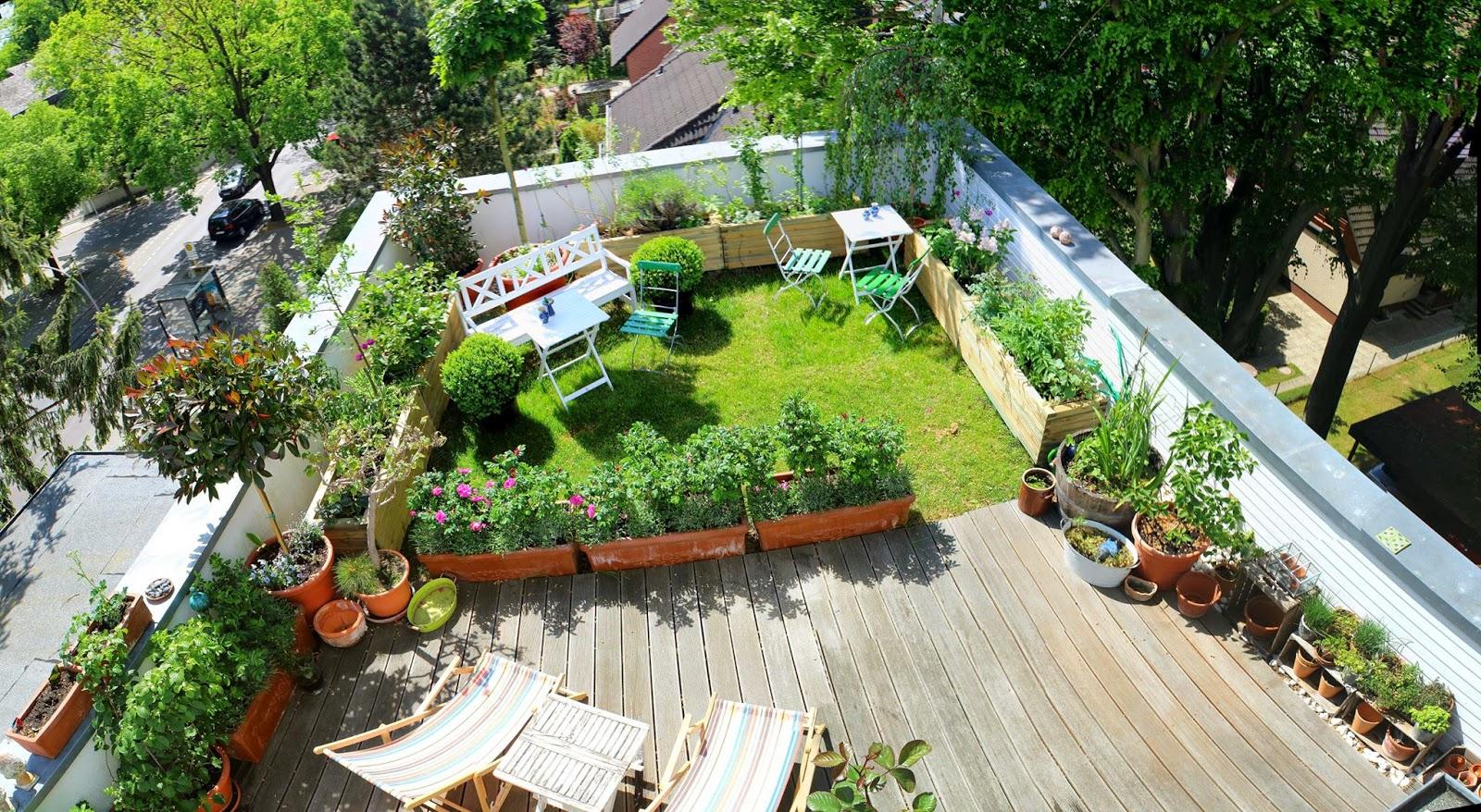 roof garden tobiasu0027s rooftop garden in berlin HWFVLOX