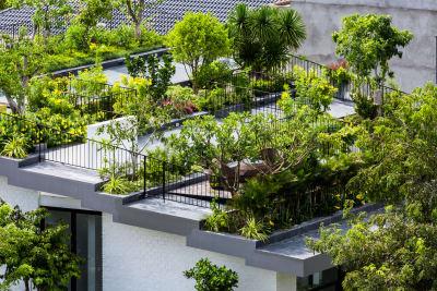 roof garden vo trong nghia architects, hiroyuki oki