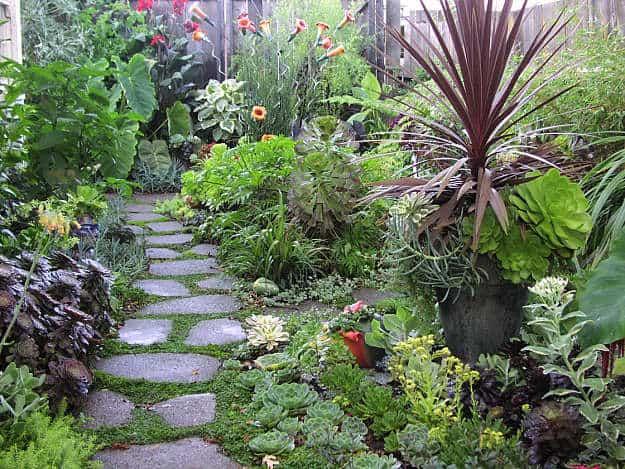 southeast backyard garden design | inspiring backyard garden