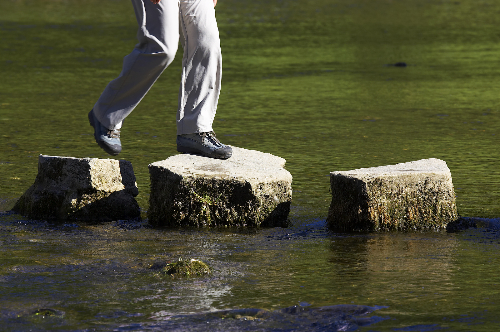stepping stones on the journey UIUIUJR